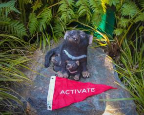 Activate-Australia--Tasmanian-Devil