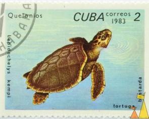 Cuba-Featured